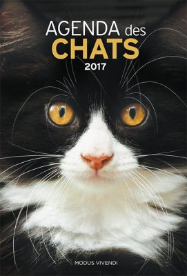 906_AgendaChats2017_cover