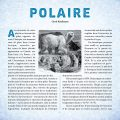 929_polaire_int1