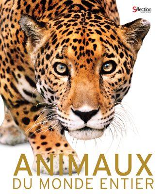 encyclopédie animaux
