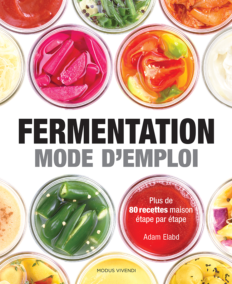 fermentation maison