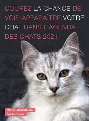 Concours Agenda des chats 2021