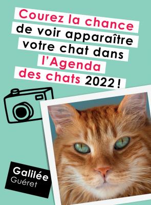 Concours Agenda des chats 2022