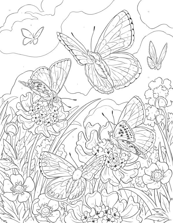 Coloriage Magique: 192 dessins à imprimer et à colorier ...