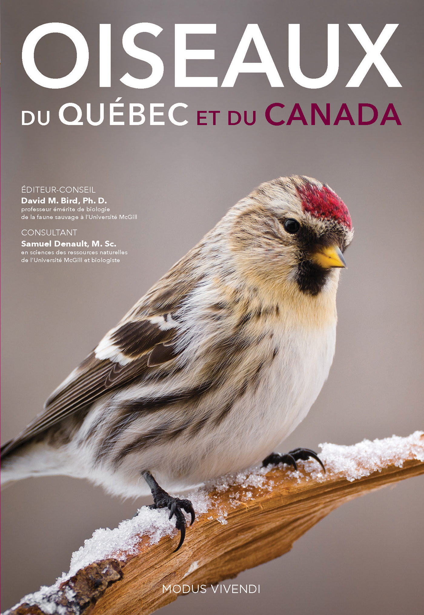 105_Oiseaux_C1