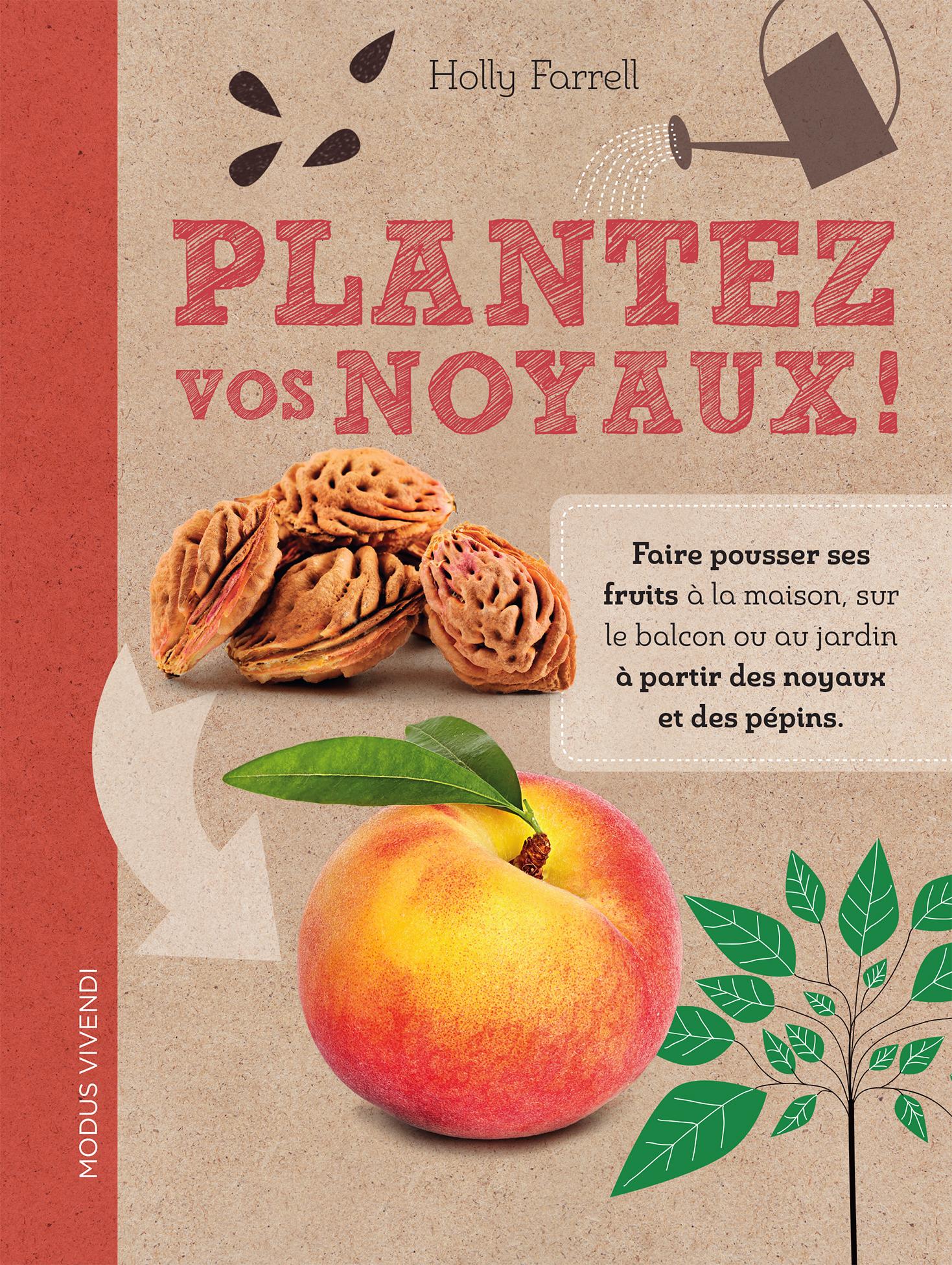 Faire Germer Noyau D Avocat plantez vos noyaux!