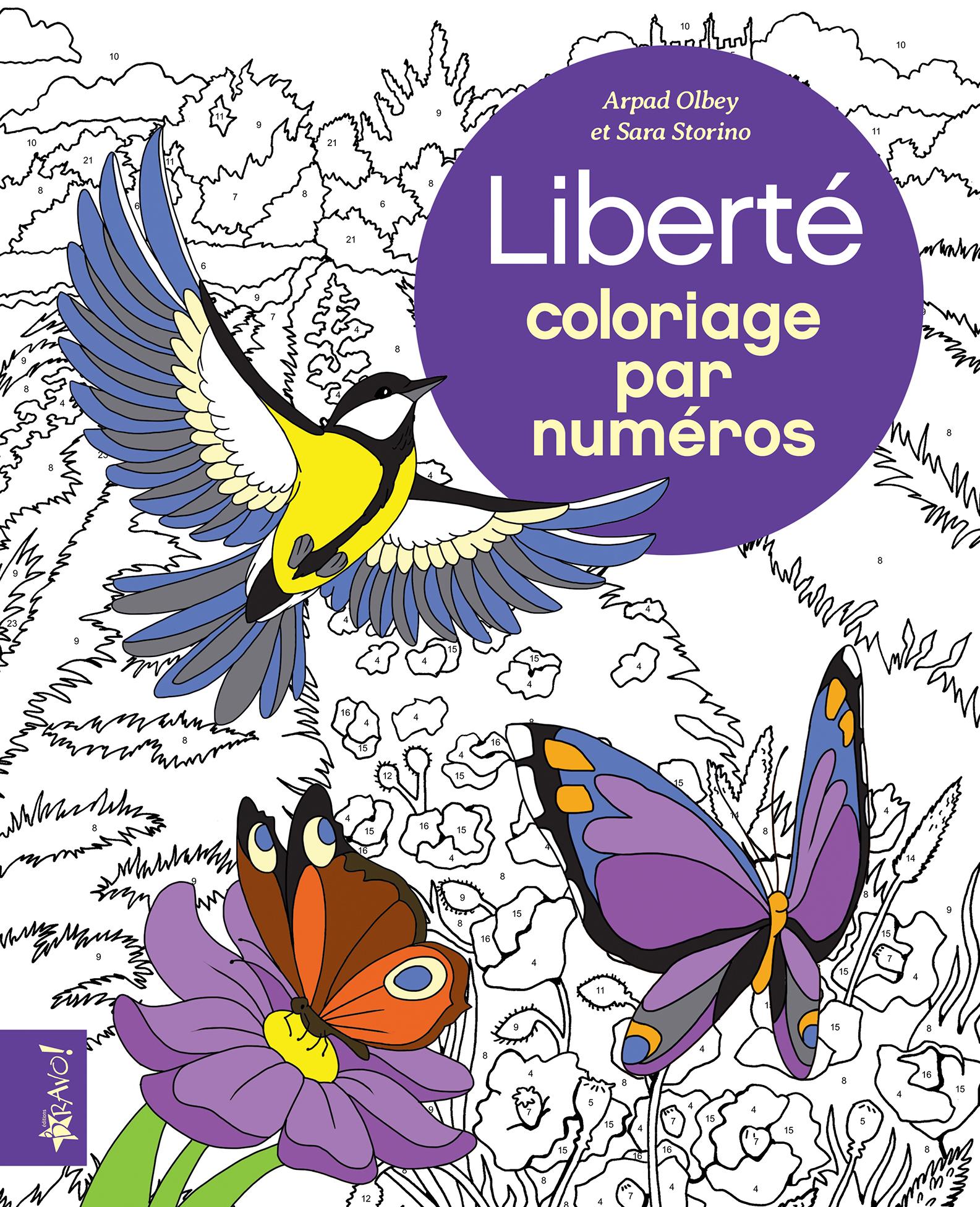 353_ColoriageParNumeros_Liberté_C1